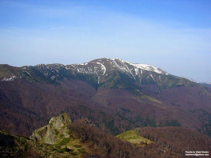 Tsarichina