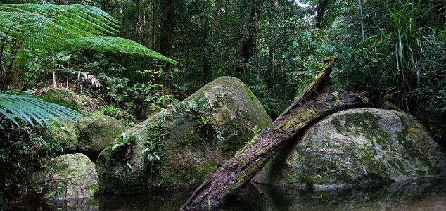 """Trovato un """"mondo perduto"""" in Australia"""