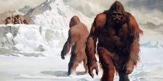 """Attenborough: """"lo Yeti potrebbe essere una creatura reale"""""""
