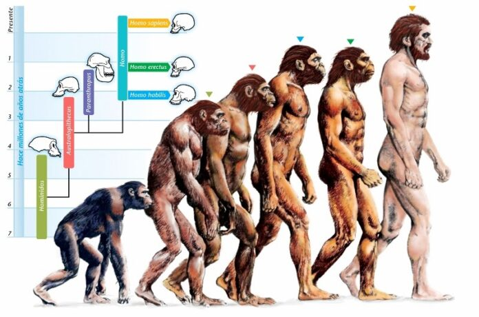 evoluzionismo