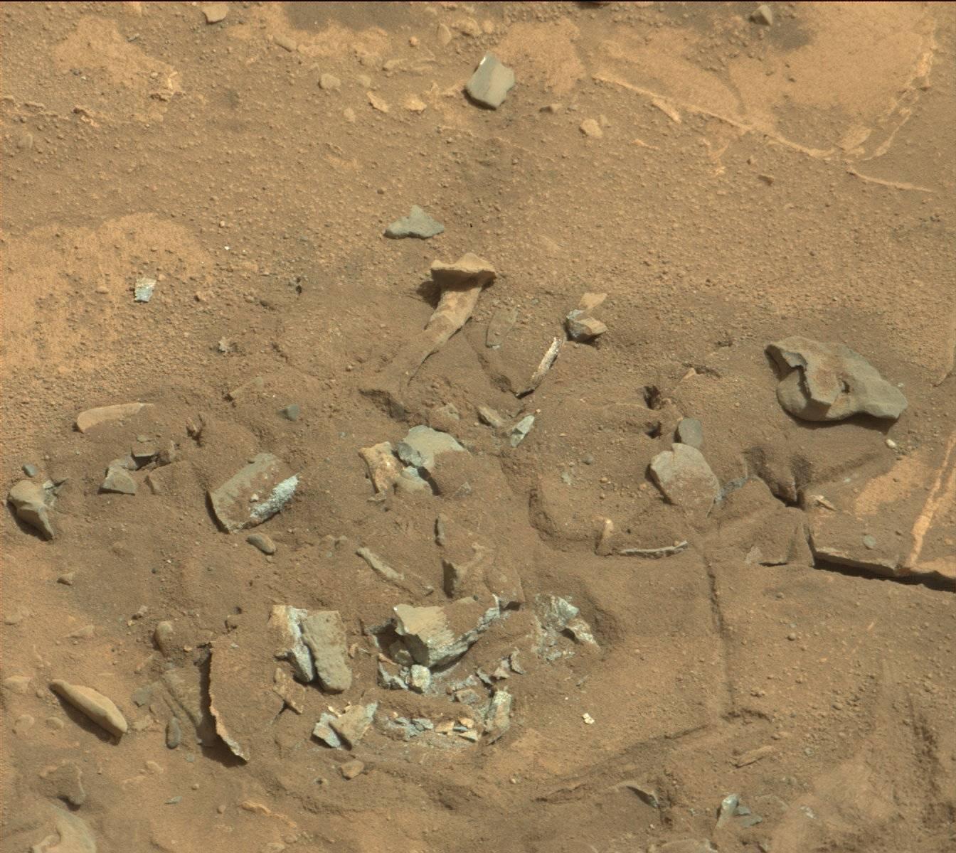 Curiosity fotografa una tibia umana su Marte