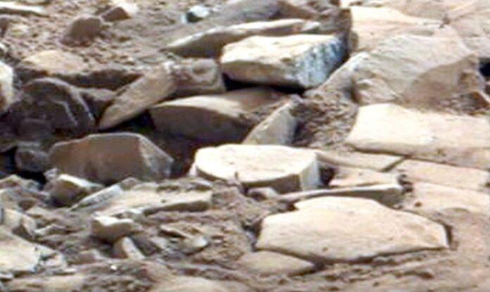 geroglifico marte1241