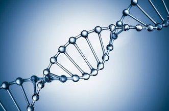 DNA-morte