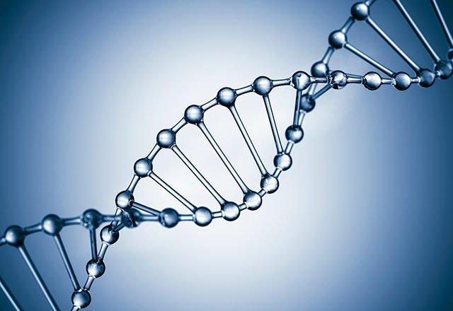 IL DNA PROVA CHE C'E' VITA DOPO LA MORTE