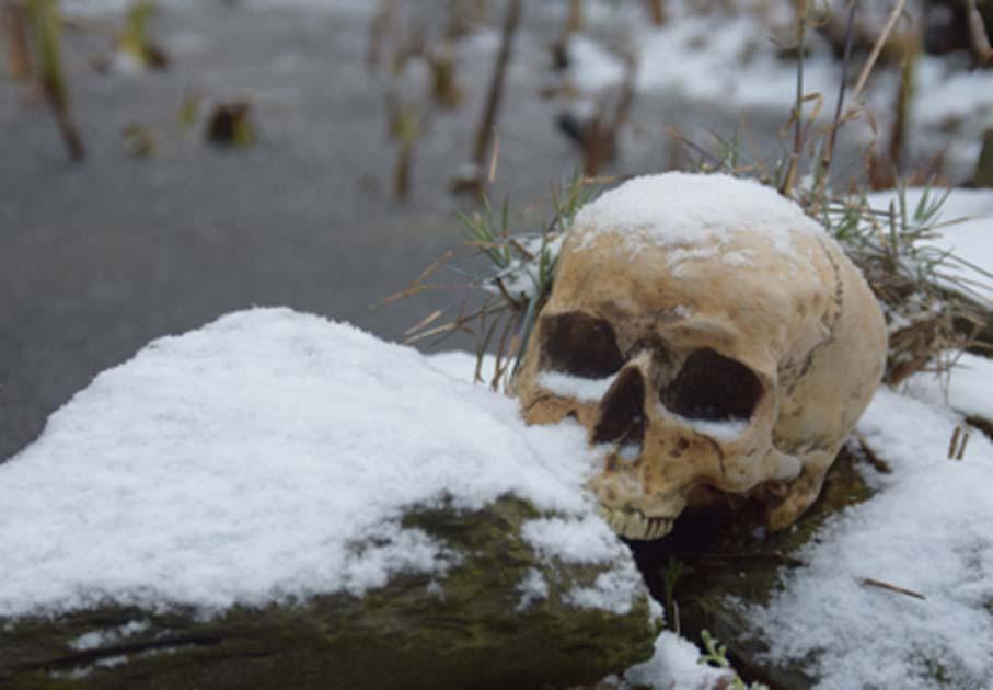skeleton-Lake-mistero